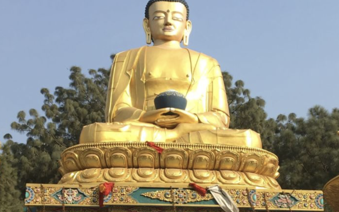 What would the Buddha do? David Loy